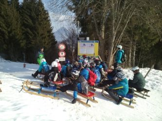 b_350_250_16777215_00_images_phocagallery_wintersporttag_2019_-_500.jpg